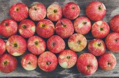 Fondo rosso maturo fresco dolce del raccolto della mela Immagine Stock Libera da Diritti