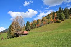 Fondo rurale di autunno Fotografie Stock Libere da Diritti