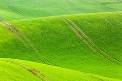 Fondo rurale di struttura di agricoltura della molla Colline delle onde verdi in Moravia del sud, repubblica Ceca Paesaggio verde Fotografie Stock Libere da Diritti
