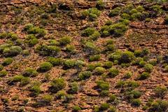Fondo rurale normale a distanza australiano della terra Fotografia Stock