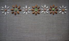Fondo sano del sitio de la consumición con las nueces de la almendra, las semillas de girasol y las frutas secadas Imágenes de archivo libres de regalías