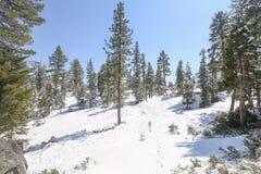 Fondo scenico di inverno del lago Tahoe Fotografia Stock Libera da Diritti