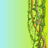 Fondo selvaggio torto dei rami delle liane illustrazione di stock