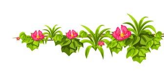 Fondo selvaggio torto dei rami delle liane Viti della giungla royalty illustrazione gratis