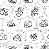 Fondo senza cuciture con frutta e le bacche Fotografie Stock Libere da Diritti