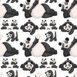 Fondo senza cuciture con il panda sveglio Fotografia Stock