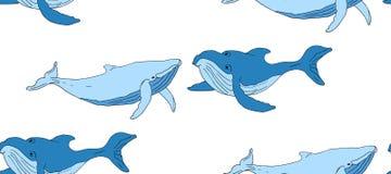 Fondo senza cuciture con le balene blu illustrazione vettoriale