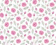 Fondo senza cuciture d'annata con i fiori e le erbe del campo illustrazione di stock