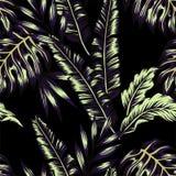 Fondo senza cuciture d'avanguardia delle piante tropicali Immagine Stock