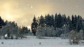 Fondo senza cuciture del ciclo del paesaggio di inverno con i fiocchi di neve archivi video