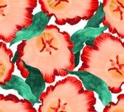 Fondo senza cuciture del fiore del fiore Modello floreale dell'illustrazione royalty illustrazione gratis