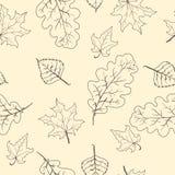 Fondo senza cuciture del modello dei rami delle foglie Illustrazione di vettore Fotografia Stock Libera da Diritti