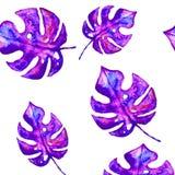 Fondo senza cuciture del modello della foglia e della pianta tropicale, stile botanico illustrazione di stock