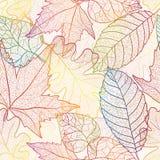 Fondo senza cuciture del modello delle foglie di autunno. Illustrazione Vettoriale