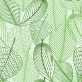 Fondo senza cuciture del modello delle foglie verdi illustrazione vettoriale