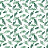 Fondo senza cuciture del modello di vettore di Fern Leaf Vector Fern Leaf Immagine Stock