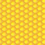 Fondo senza cuciture del modello del favo giallo luminoso Cellule prismatiche esagonali della cera sviluppate dalle api del miele Immagine Stock