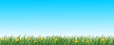 Fondo senza cuciture dell'erba verde royalty illustrazione gratis