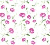 Fondo senza cuciture della carta da parati dell'acquerello dell'estratto di arte rosa fresca elegante del fiore Fotografie Stock Libere da Diritti