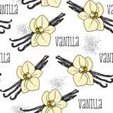 Fondo senza cuciture della vaniglia illustrazione di stock
