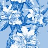 Fondo senza cuciture delle azalee dei fiori Fotografia Stock Libera da Diritti