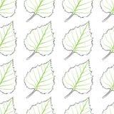 Fondo senza cuciture delle foglie della betulla Fotografia Stock Libera da Diritti