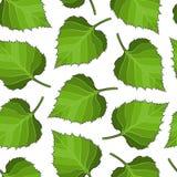 Fondo senza cuciture delle foglie della betulla Fotografia Stock