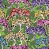 Fondo senza cuciture delle foglie verdi del modello multicolore del leopardo Fotografia Stock