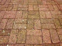 Fondo senza cuciture di struttura della pietra del mattone rosso Fotografia Stock Libera da Diritti