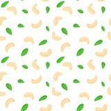 Fondo senza cuciture di vettore di un anacardio Interi anacardii sgusciati metà e foglie delle noci su bianco elementi matti Fotografia Stock Libera da Diritti