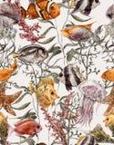 Fondo senza cuciture di vita di mare dell'acquerello Fotografia Stock Libera da Diritti