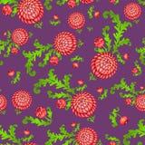 Fondo senza cuciture floreale con i crisantemi Immagini Stock