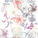 Fondo senza cuciture floreale di vettore con l'ibisco inciso dei fiori Fotografie Stock Libere da Diritti