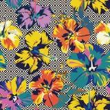 Fondo senza cuciture geometrico di colore astratto dell'ibisco Fotografia Stock Libera da Diritti