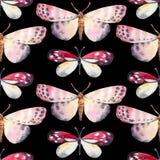Fondo senza cuciture, modello di farfalla Illustrazione dell'acquerello Fotografie Stock Libere da Diritti