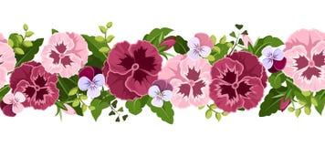 Fondo senza cuciture orizzontale con i fiori della pansé. Immagini Stock