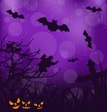 Fondo siniestro de Halloween con las calabazas, palos, fantasma stock de ilustración