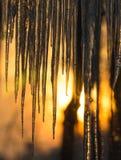 Fondo, sol que amanece en los carámbanos que cuelgan bajo del borde del tejado Extracto de la formación natural del carámbano, en Fotografía de archivo