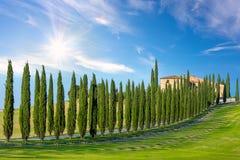 Fondo soleggiato del paesaggio della campagna della Toscana Fotografia Stock Libera da Diritti