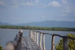 Fondo solo piacevole del ponte Fotografie Stock Libere da Diritti
