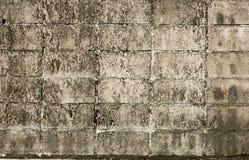 Fondo sporco del muro di cemento Immagini Stock