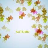 Fondo stagionale di autunno Fotografie Stock Libere da Diritti