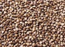 Fondo, struttura, il grano saraceno della groppa Fotografia Stock