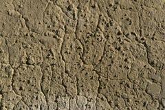 Fondo, struttura - parete marrone dell'argilla fotografia stock libera da diritti