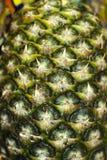 Fondo, struttura - superficie dell'ananas acerbo Immagini Stock