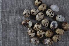 Fondo strutturato con le piccole uova di quaglia Prodotti di Eco Fotografia Stock