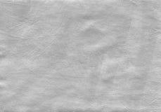 Fondo strutturato d'argento con gli elementi naturali dell'acrilico della pittura e della carta Immagini Stock Libere da Diritti
