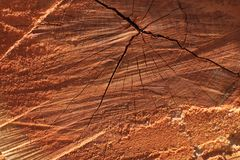 Fondo strutturato del grano segato Cracked di legno del tronco di albero immagini stock