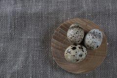Fondo strutturato della molla con le piccole uova di quaglia Fotografie Stock