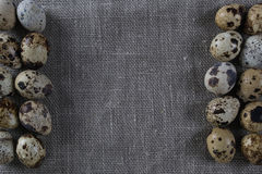 Fondo strutturato della molla con le piccole uova di quaglia Immagine Stock Libera da Diritti